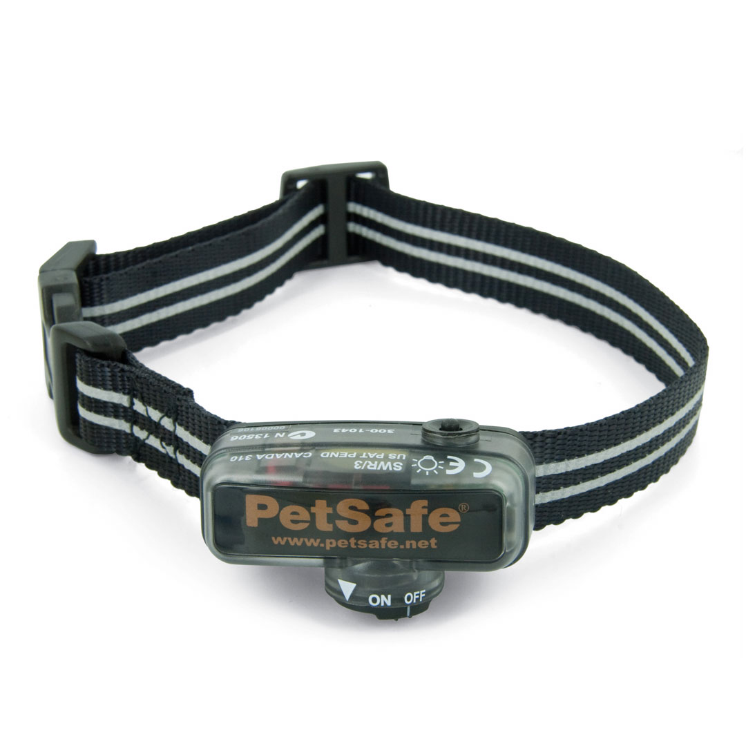 In Ground Fence System Little Dog Collar Pig19 11042