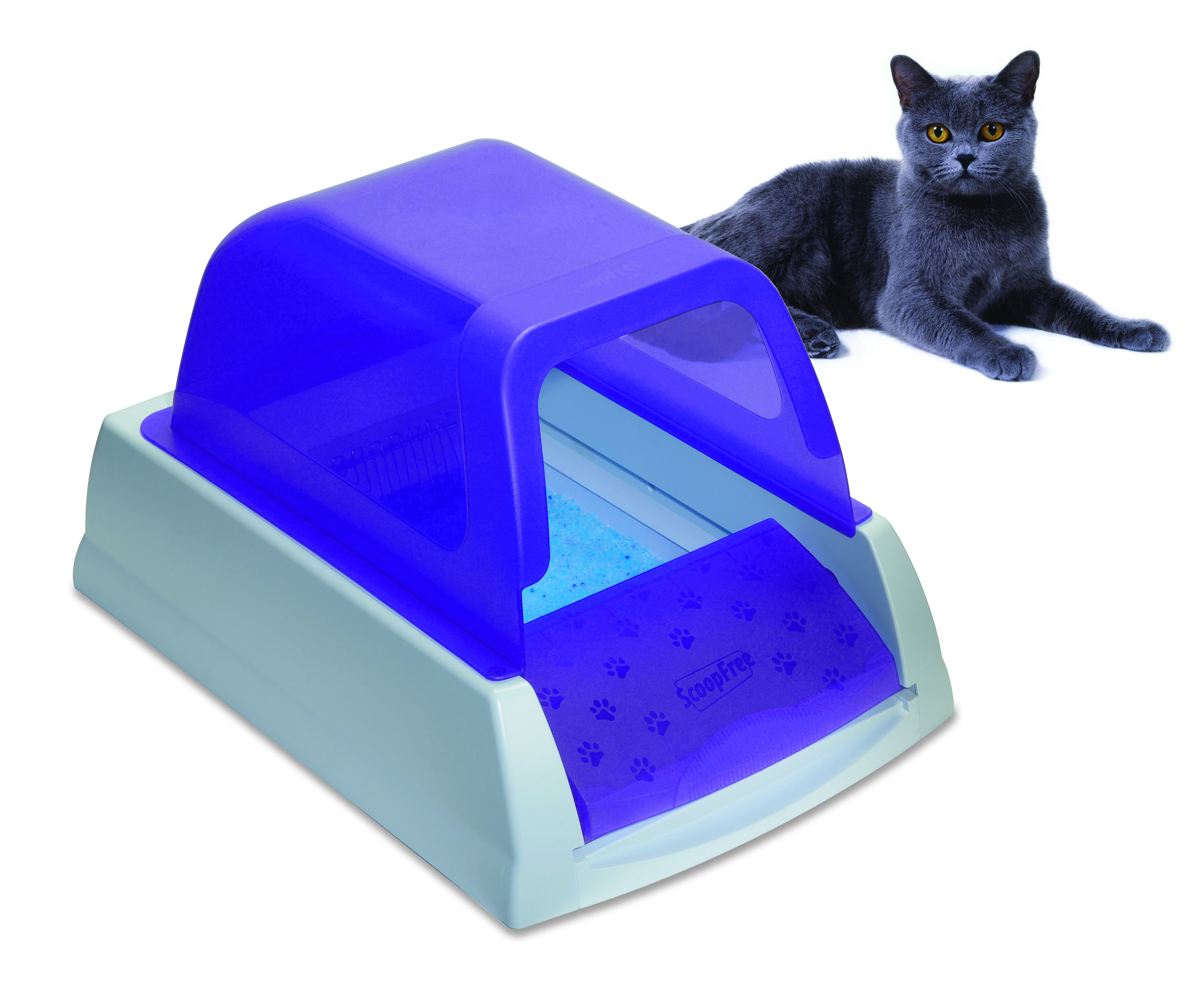 Self Cleaning Cat Litter Box Petsafe Litter Boxes For