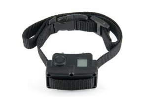 Bark Control Collar Bark Control Devices For Dogs Petsafe