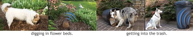 Pet Deterrent Sprays Barriers Amp Mats Petsafe Pet