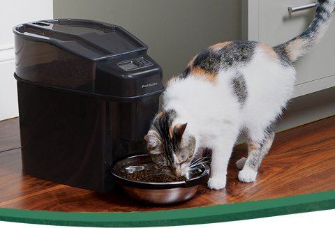 Automatic Pet Feeder Timed Cat Feeder Amp Dog Feeder Petsafe