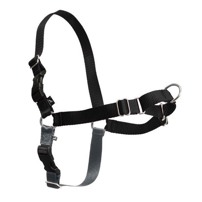 Easy Walk® Harness