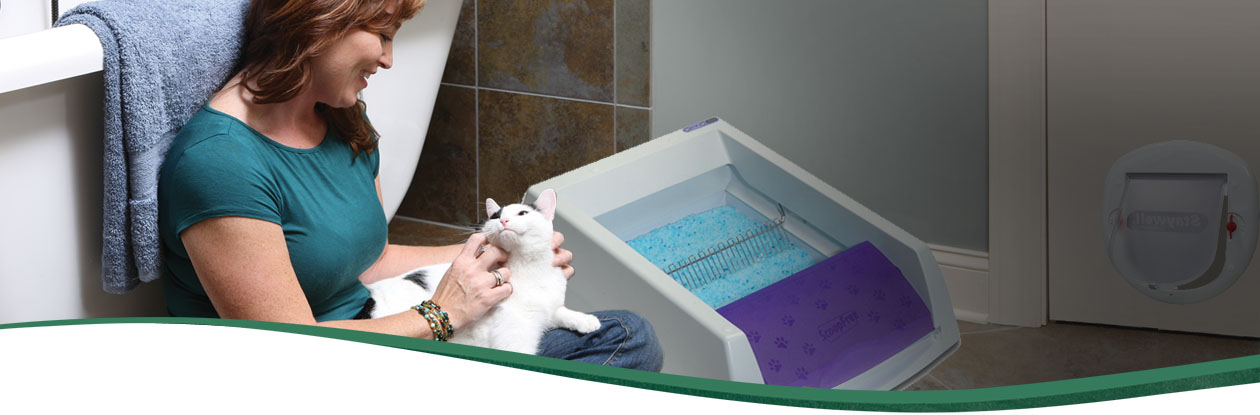 give your cat a private bathroom litter box - Scoopfree Litter Box