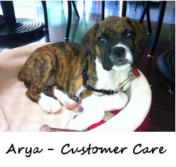 Arya from Customer Care