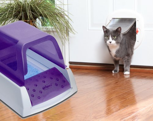 Give Your Cat Private Access To The Litter Box With A Cat Door