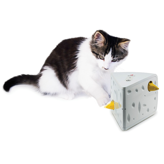 Automated Cat Toys : Cat products by petsafe brand