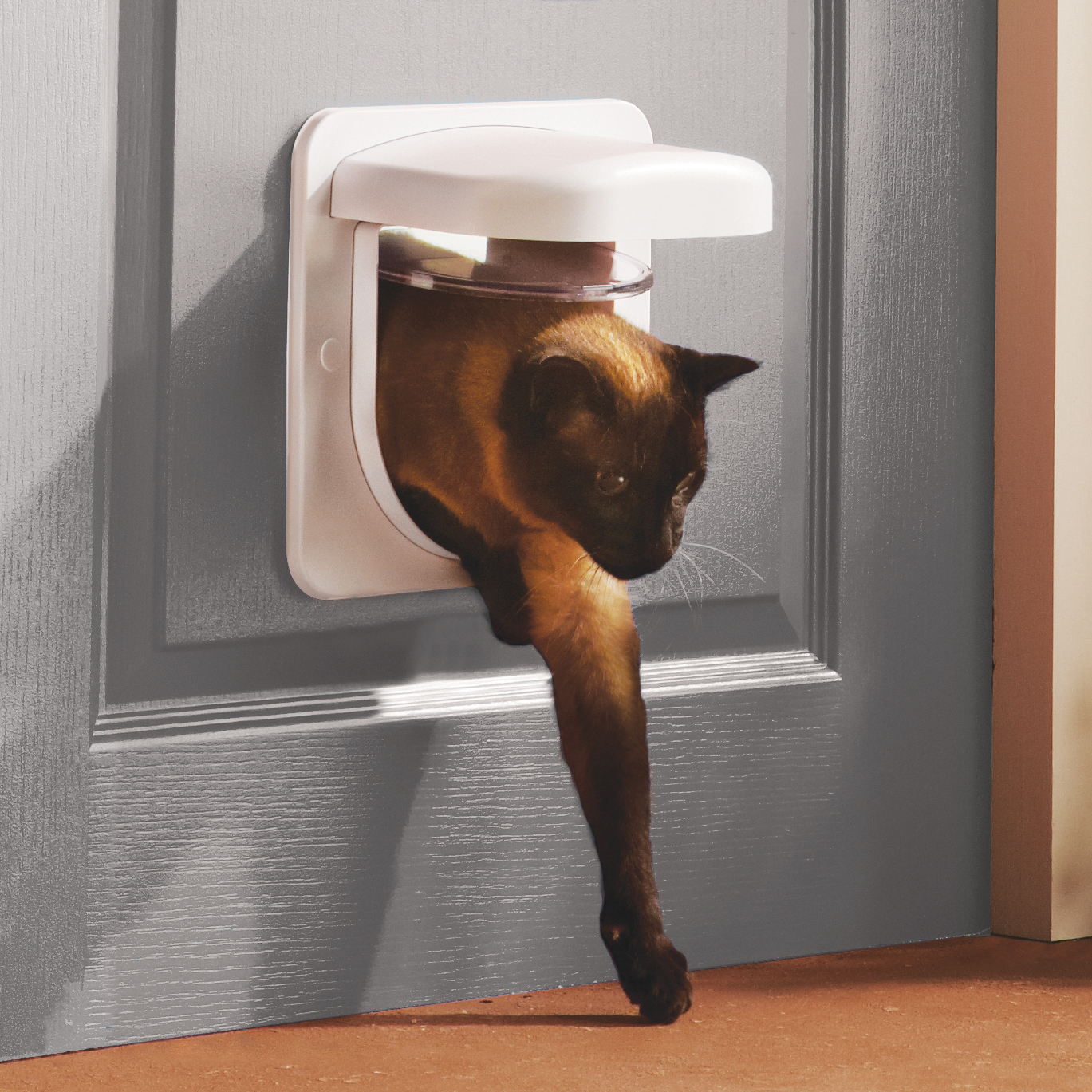 microchip cat door