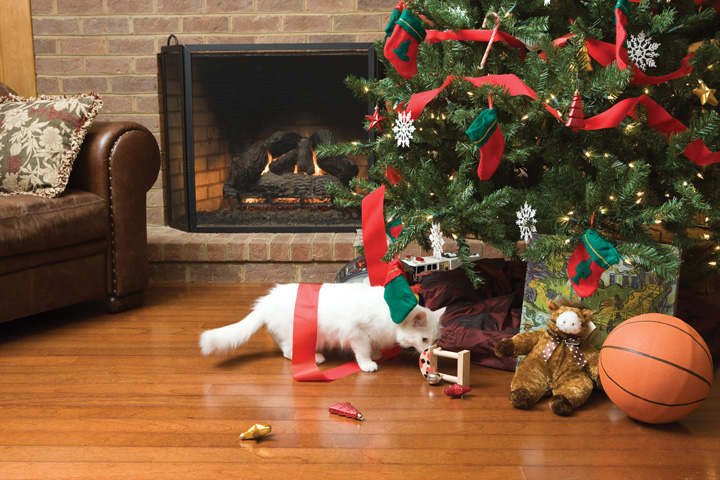 holiday pet proofing petsafe articles