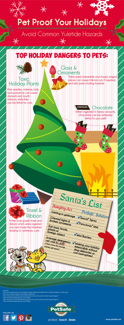 Pet Proof Your Holidays infographic by PetSafe