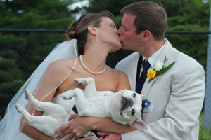 Dogs can be great flower girls at weddings-- just look at Buckley!