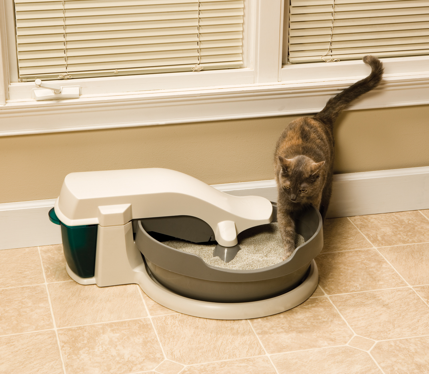 5 Reasons To Love Automatic Litter Boxes Petsafe 174 Articles