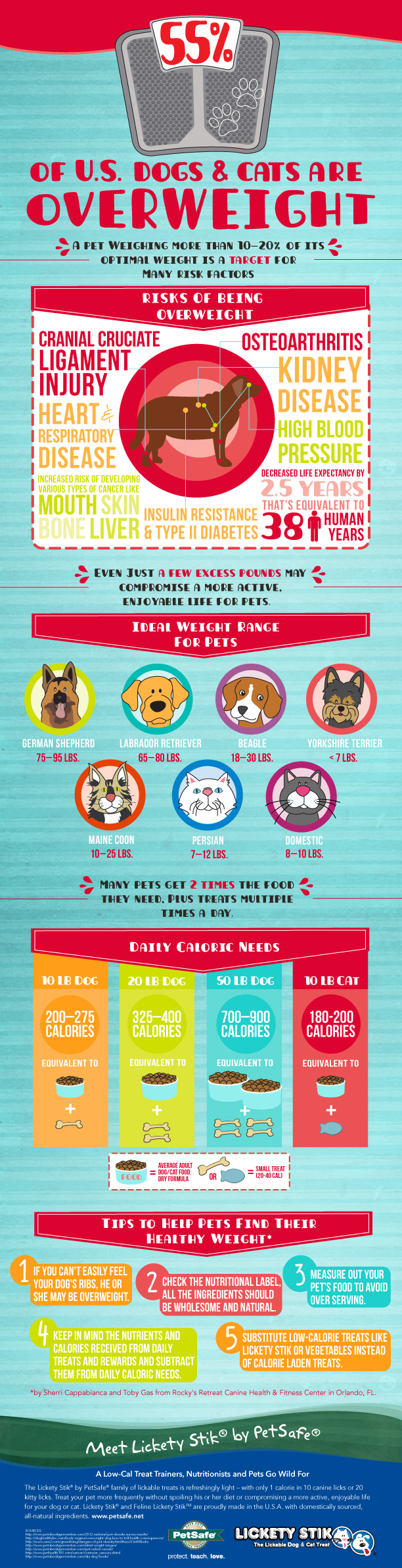 Pet Obesity in America infographic by PetSafe