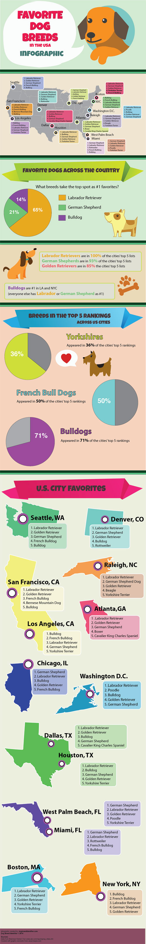 Most Popular Dog Breeds in United States