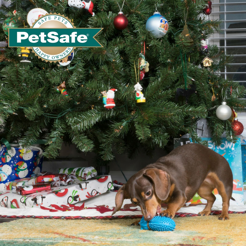 all i want for christmas is a puppy petsafe articles