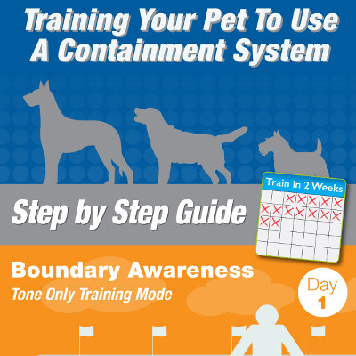 How to Train Your Pet to Use a Containment System