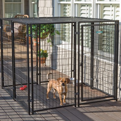 dog winter kennel shelter