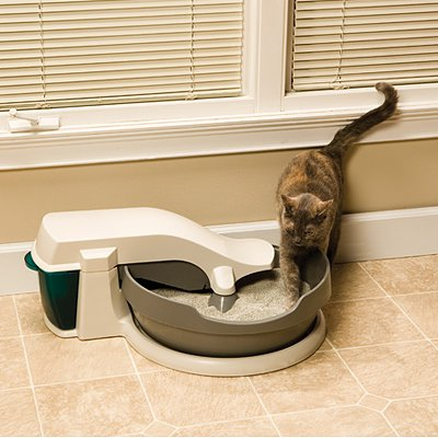 where do you keep your litter box 1