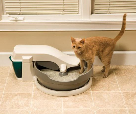 With One Cat And Litterbox You Could Probably Get Away Cleaning It Two To Three Times A Week