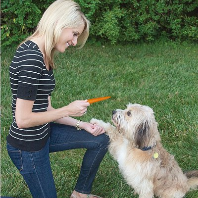 healthy pet treats