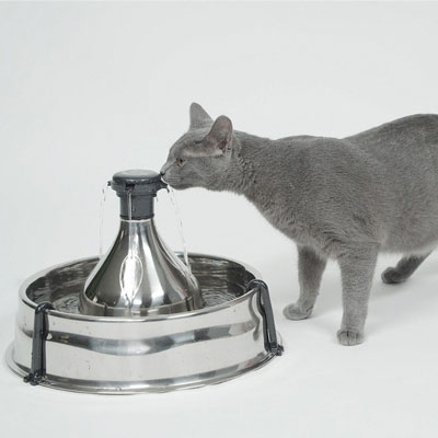 Don't want to see your kitty suffer? A cat fountain can prevent urinary agony