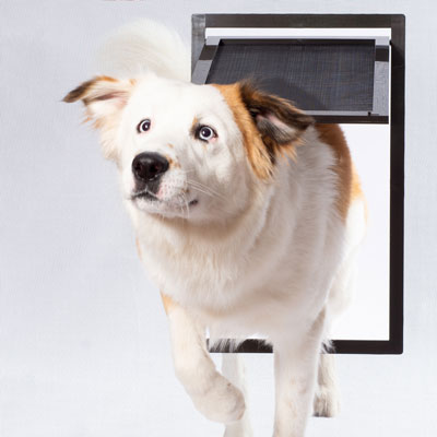 PetSafe® Pet Doors Provide Paths to Freedom for Dogs, Cats and Owners