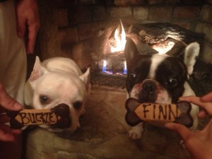 Buckley and Finn receive personalized treats at Alexander's Cabin in Asheville, NC.