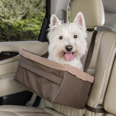 Six pet-travel tips for your dog days getaway