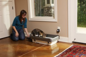 Lily got to try out the Sweep One™ Advanced Auto-Cleaning Litter Box System. Maybe Santa will bring her one?