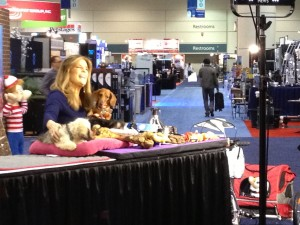 Global Pet Expo NBC TODAY