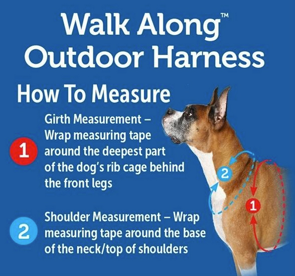 Walk-Along Harness Sizing Chart